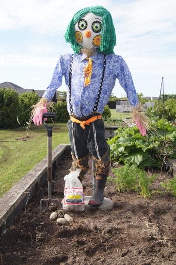 it's garden time!